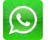 whatsapp mini